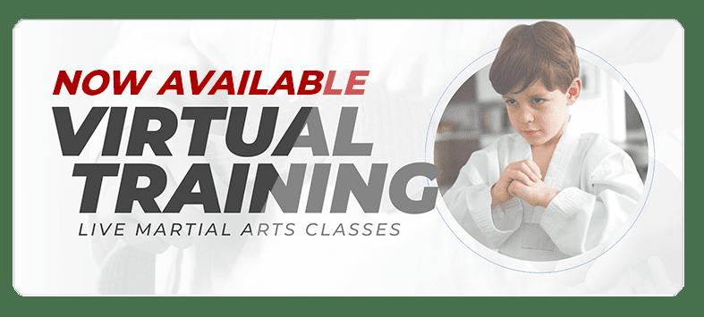 VIRTUALPOPUPSPARK.1.1, Integrated Martial Athletics