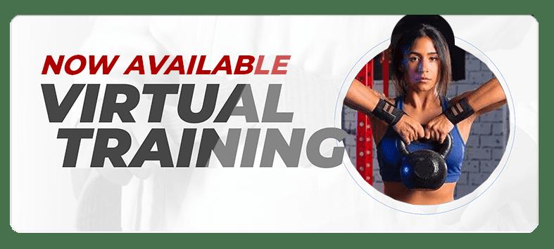 VIRTUAL ADULTPOPUPS 2, Integrated Martial Athletics